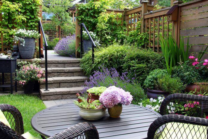 Gardening Ideas That Will Make Your Garden Look Amazing
