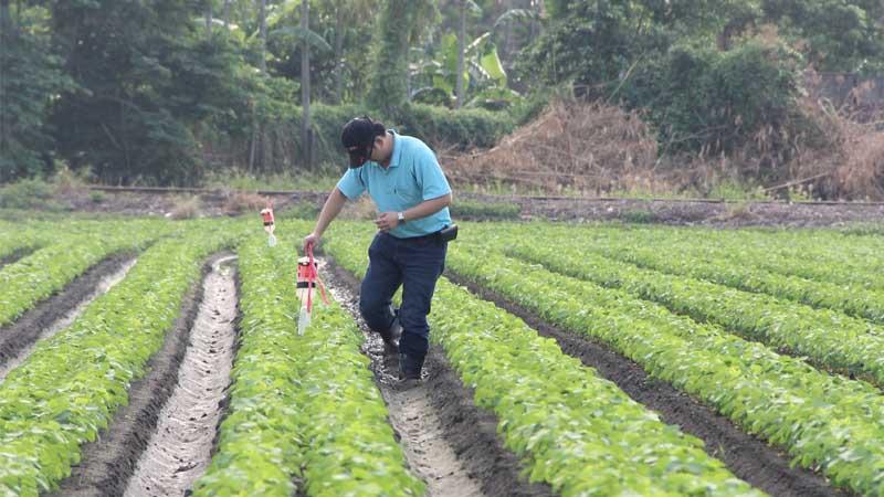 Pheromones in Agriculture Market